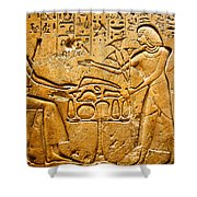 Egyptian Hieroglyphics Shower Curtain