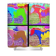 Eight Horses Shower Curtain by Patrick J Murphy