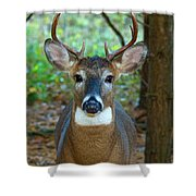 Eight Point Face To Face Shower Curtain