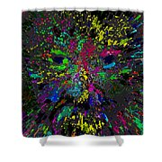 Einsteins Exploding Head Shower Curtain