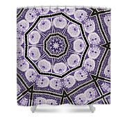 Einstein Mandala Shower Curtain