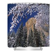 El Capitan Framed By Snow Covered Black Oaks California Shower Curtain