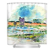El Rocio 08 Shower Curtain