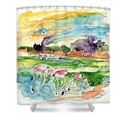 El Rocio 09 Shower Curtain