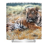 El Tigre Shower Curtain