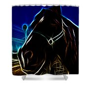 Electric Horse Shower Curtain