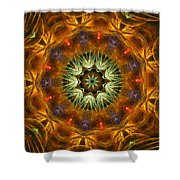 Electric Mandala 1 Shower Curtain