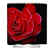 Electric Rose Shower Curtain