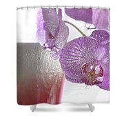 Elegance And Refinement Shower Curtain