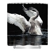 Elegance In Motion 2 Shower Curtain