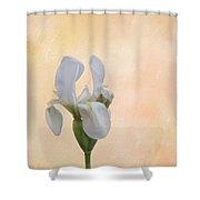 Elegance In White Shower Curtain