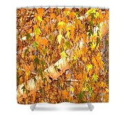 Elegant Autumn Branches Shower Curtain