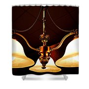 Elegant Charm Shower Curtain