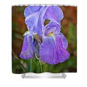Elegant Iris Shower Curtain