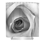 Elegant Rose In Black And White Shower Curtain