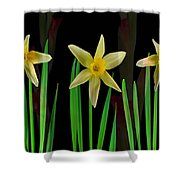 Elegant Yellow Flowers On Green Shoots Shower Curtain