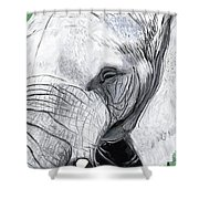 Elephant 1 Shower Curtain