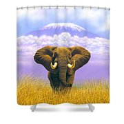 Elephant At Table Mountain Shower Curtain