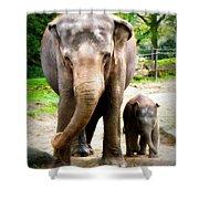 Elephant Baby Olli With Mommy Shower Curtain