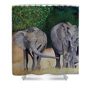 Elephant Family Gathering Shower Curtain
