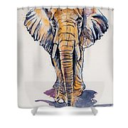 Elephant In Gold Shower Curtain