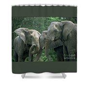Elephant Ladies Shower Curtain