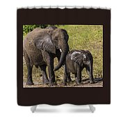 Elephant Mom And Baby Shower Curtain