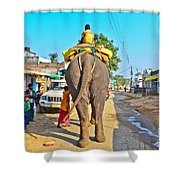 Elephant Ride In Street Shower Curtain