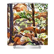 Elephant Rocks Revisited IIb Shower Curtain