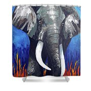Elephant - The Gentle Shower Curtain