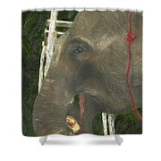Elephant Under His Thumb Shower Curtain