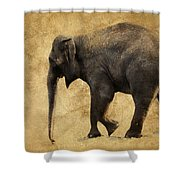 Elephant Walk II Shower Curtain