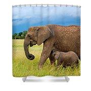 Elephants In Masai Mara Shower Curtain