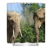 Elephants In The Sand Shower Curtain