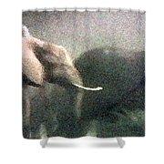 Elephants On The Move Shower Curtain