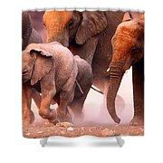 Elephants Stampede Shower Curtain