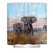 Elephants Warning To The Lions Shower Curtain