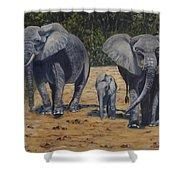 Elephants With Calf Shower Curtain