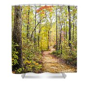 Elfin Forest Shower Curtain