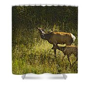 Elk Doe And Fawn-signed  #4465 Shower Curtain