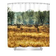 Elk In The Distance No. 2 Shower Curtain