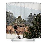 Elk In The Snowing Open Shower Curtain