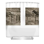 Elk Jumping A Fence Shower Curtain