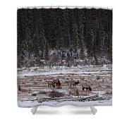 Elk Landscape Shower Curtain