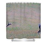 Elk On The Plains 1 Shower Curtain