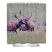 Elk On The Plains 3 Shower Curtain