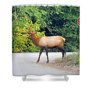Elk Right Of Way Shower Curtain