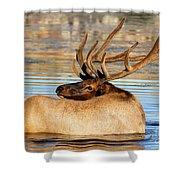 Elk Velveteen  Shower Curtain