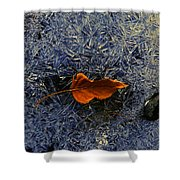 Elk's Fork Ice Shower Curtain