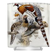 Elliot's Pheasant Shower Curtain by Joseph Wolf
